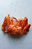 Big whole alaskan crab