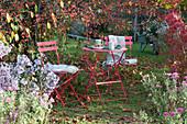 Kleine Sitzgruppe neben Zierapfelbaum und Herbstaster