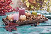 Herbstliche Tischdeko mit Kerzen, Äpfeln, Bucheckernhüllen und Kastanien