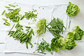 Fresh green vegetables: legumes, herbs and lettuce