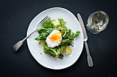 Rapini with a poached egg and potatoes