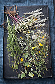 Dried herbs for herbal tea