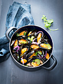Mussels in a beer broth