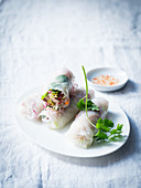 Summer rolls with a chilli dip