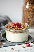 Bowl of fresh healthy yogurt with cereals and cranberries