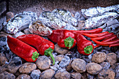 Pointed peppers and chilli peppers lying on glowing coals