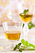 Homemade spiced herbed liqueur with peppermint and lemon balm