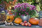 Chrysantheme Dreamstar 'Pan Lilac' mit Kürbissen, Äpfeln und Nüssen