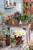 Herbst Arrangement mit Chrysantheme, Knospenheide und Stiefmütterchen