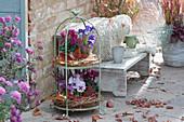 Terrasse mit herbstlich dekorierter Etagere
