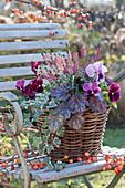 Korb mit Purpurglöckchen, Stiefmütterchen, Knospenheide und Efeu auf Stuhl