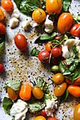 Caprese Salat mit verschiedenen Tomaten, Mozzarella und Basilikum