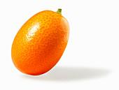 A kumquat