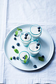Pomelo ice cream with blueberries