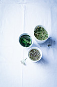 Assortment of herb teas