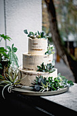 A minimalist wedding cake decorated with succulents