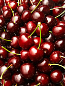 Dark cherries (edge to edge)
