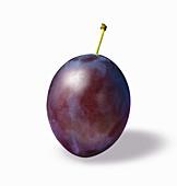 A plum