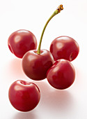 Five bright red cherries