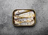 Offene Sardinenbüchse