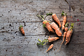 Fresh carrots on a wooden surface