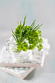 Parsley and chives in a glass of water