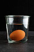 Frische Eier sinken im Wasserglas zu Boden