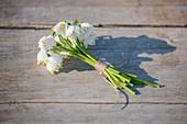 Kleiner Strauß aus Blüten vom Märzenbecher