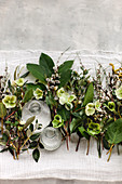 Hellebores, pussy willow and olive branches