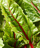Chard leaves on a gray surface
