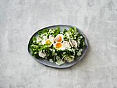 Brunnenkressesalat mit grünen Bohnen, Ei und Kräuterdressing