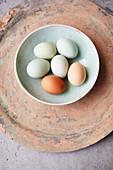 Verschiedenfarbige Eier