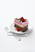 Chocolate and raspberry ice cream cake with almond brittle
