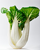 Baby Bok Choy on White Background