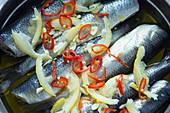 Junger Hering in Zitronen-Knoblauch-Marinade, zum Braten eingelegt