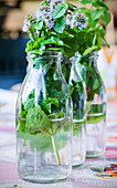 Wild herbs in a bottles of water as table decoration