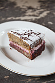 A piece of buckwheat cake with cranberries