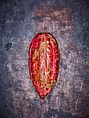 Red cocoa pod on a grey metal background