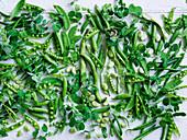 Verschiedene grüne Hülsenfrüchte