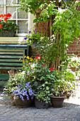 Stadtgarten mit Bank und Sommerblumen