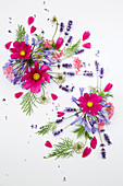 Sommer-Collage mit Cosmos, Agapanthus, Lavandula