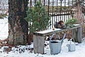Bank im winterlichen Garten