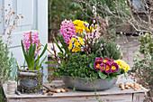 Frühlingsschale mit Primeln, Hyazinthen, Bohnenkraut und Thymian