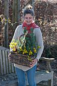 Frau trägt Korbkasten mit Winterlingen und Pinien