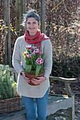 Frau trägt Topf mit Tulpe 'Wirosa'
