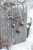 Lärchenzweige und Mooskugeln als Dekoration am Gartentor