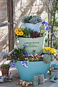 Etagere aus zweckentfremdeten Haushaltsgefäßen bepflanzt
