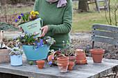 Etagere aus zweckentfremdeten Haushaltsgefäßen bepflanzen