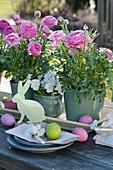 Oster-Tischdekoration mit Ranunkeln und Hornveilchen