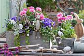Oster-Arrangement mit Ranunkeln, Blaukissen, Traubenhyazinthen, Efeu und Purpurglöckchen dekoriert mit Osterhasen und Ostereiern